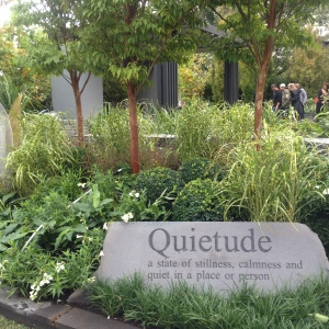 'Quietude' by Cycas Landscape Design and Lisa Ellis Gardens